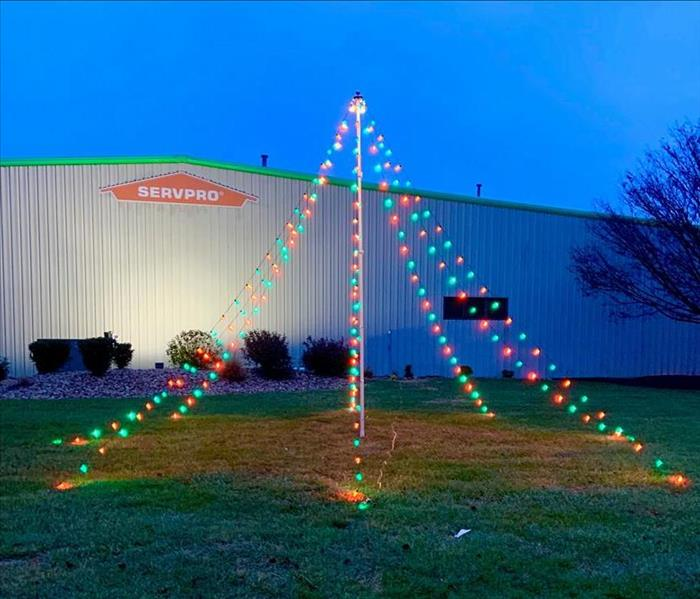 SERVPRO Light Tree