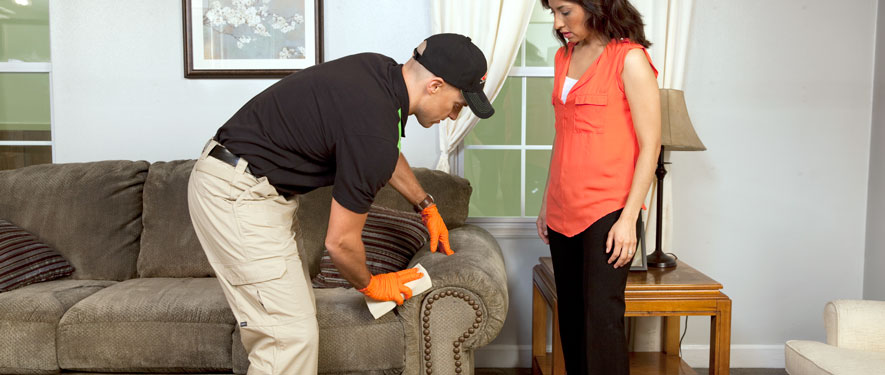 Lynchburg, VA carpet upholstery cleaning